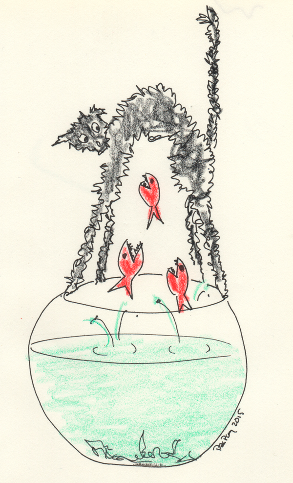 A fish on Friday n°210 – Friday 13th • Vendredi 13