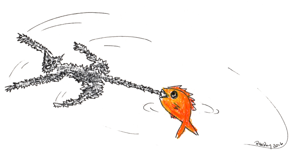 A fish on Friday n°236