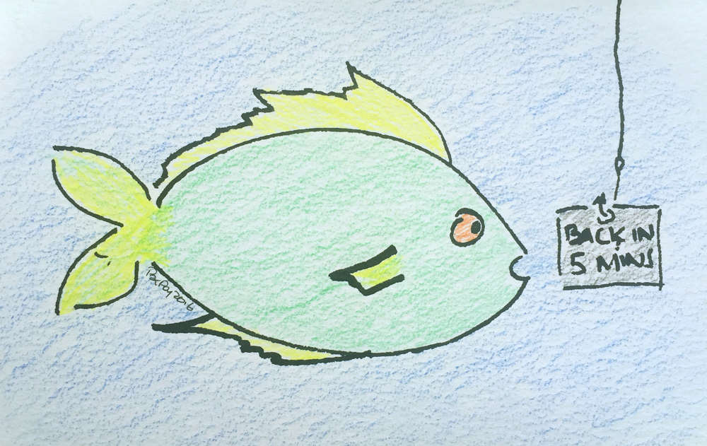 A fish on Friday n°249