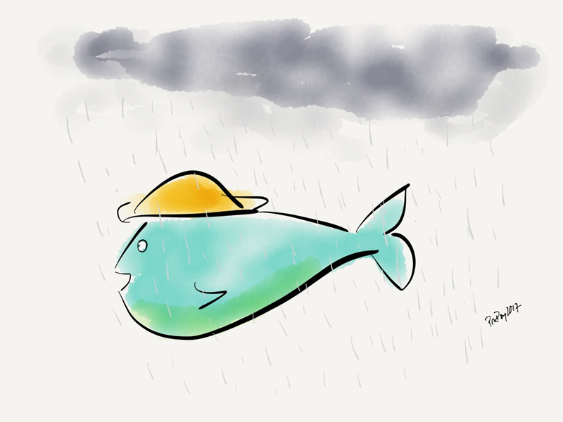 A fish on Friday n°295