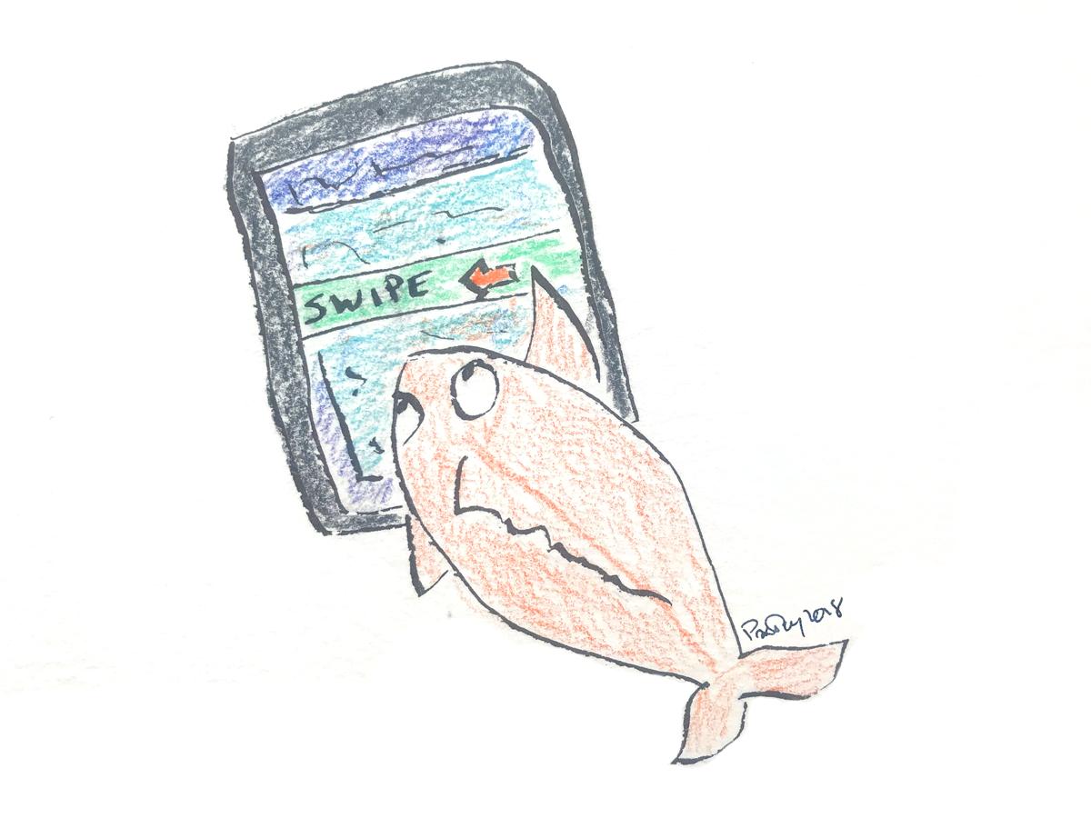 Fish345