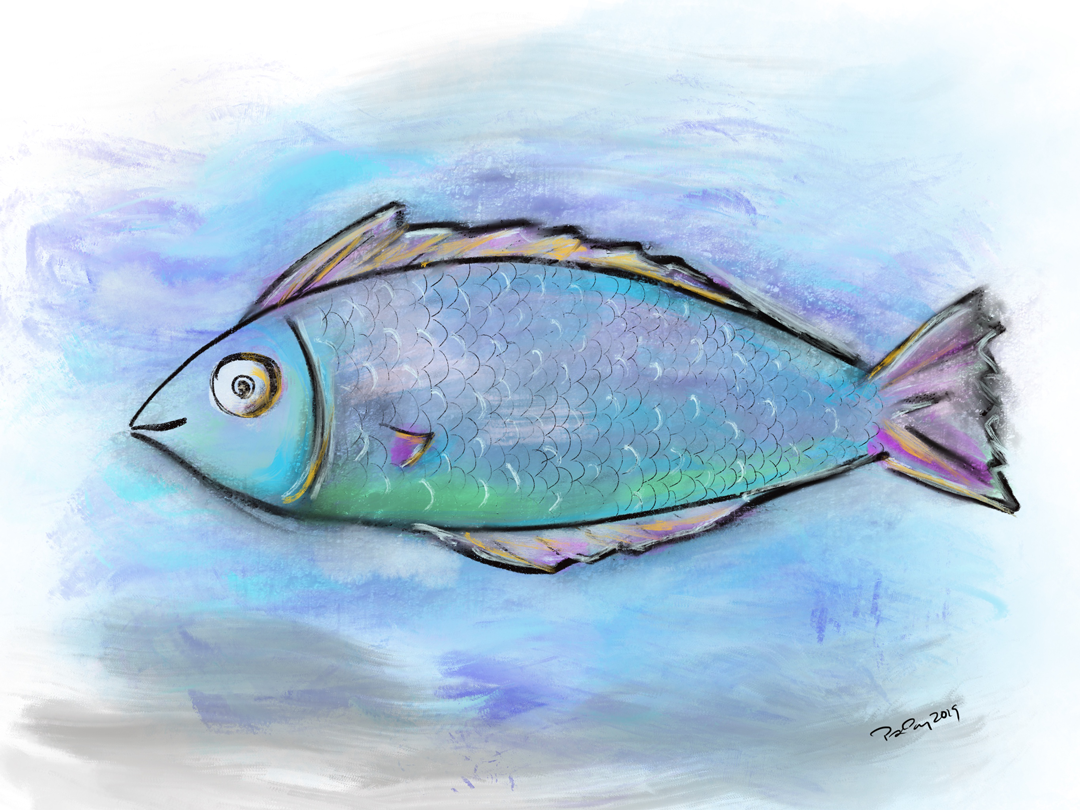 Fish381