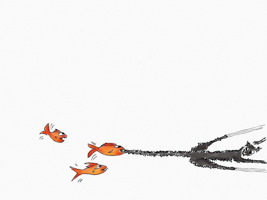 A-fish-on-Friday-no408